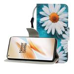 For One Plus 8 Pro Colored Drawing Horizontal Flip Leather Case with Holder & Card Slot & Wallet(Chrysanthemum)